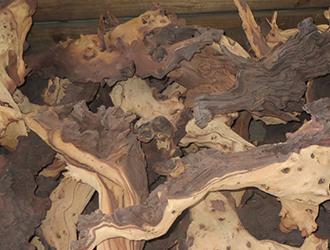 namibian hardwood mupane roots
